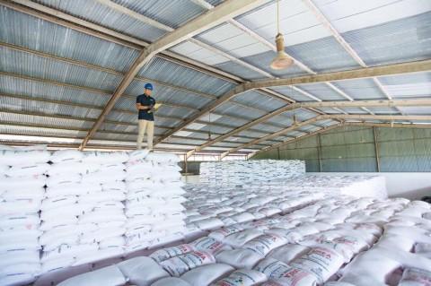 Pupuk Indonesia Catat Penjualan Pupuk Tumbuh 12,5%