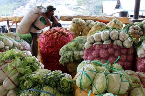 Indonesia Bidik Pasar Sayur Beku Jepang