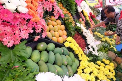 Kemendag Dorong Ekspor Sayur dan Buah ke Jepang