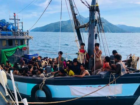 Dikira Tenggelam, 26 Pengungsi Rohingya Sembunyi di Semak