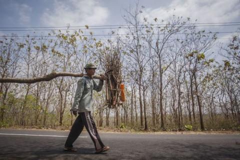 Kemarau di Jateng Selatan Diprediksi Hingga September