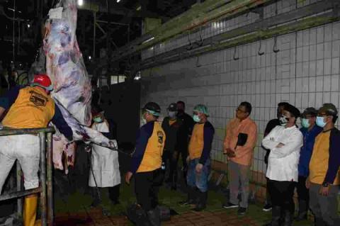 Wagub DKI Tinjau Pemotongan Kurban di RPH Dharma Jaya