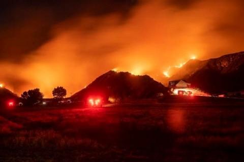 Kebakaran Hutan California Hanguskan 8.000 Hektare Lahan