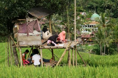 Kesulitan Akses Internet, Siswa di Pelosok Enrekang Belajar di Sawah