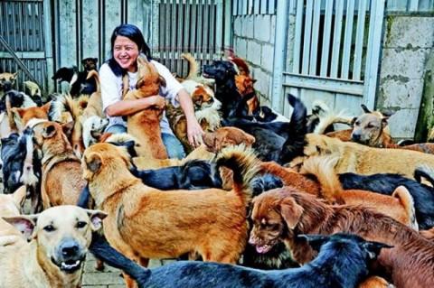 Dr. Susana Somali #BangkitDari Pandemi untuk Selamatkan Lebih Banyak Anjing