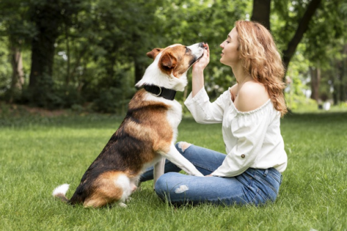 Sebuah penelitian dari Frontiers in Psychology pada 2017 menemukan bahwa anjing dapat terpikat oleh senyuman manusia. (Foto: Ilustrasi. Dok. Freepik.com)