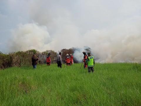 Kebakaran Lahan di Ogan Ilir Sempat Ganggu Arus Tol Palindra