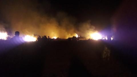 50 Hektare Lahan di Pidie Jaya Terbakar