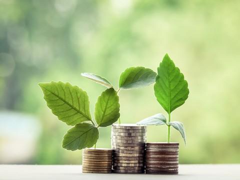 Pentingnya Diversifikasi Investasi Hadapi Tantangan Ekonomi