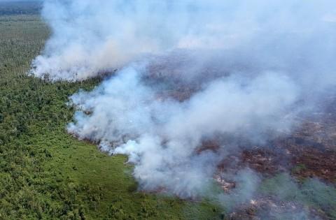 Belasan Titik Api Muncul di Kalimantan Selatan