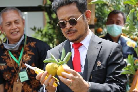 Mentan Ingin Muncul Kawasan Korporasi Petani di Sulawesi Utara