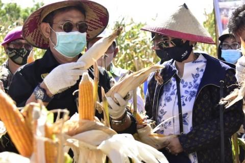 Ketersediaan Stok Pangan Selama Pandemi Perlu Terjamin