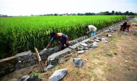 Realisasi Padat Karya Infrastruktur Wilayah Capai 73%