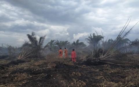3,7 Hektare Lahan di Banyuasin dan Ogan Ilir Terbakar