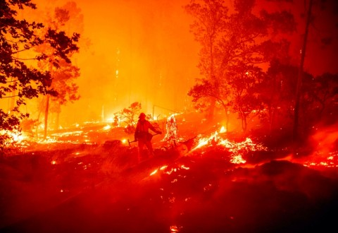Tak Ada WNI Jadi Korban Kebakaran Hutan di Los Angeles