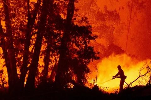 Jumlah Korban Tewas Kebakaran Hutan AS Dekati 30