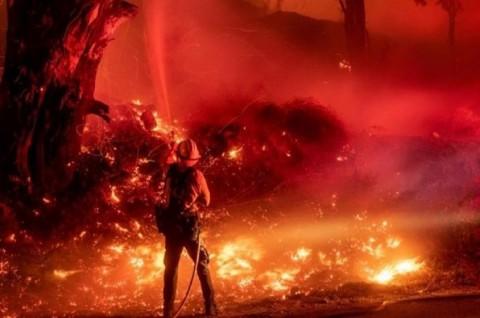 Trump Bantah Dampak Perubahan Iklim Terkait Kebakaran California