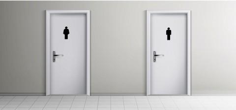 Toilet Umum, Zona Utama Kuman
