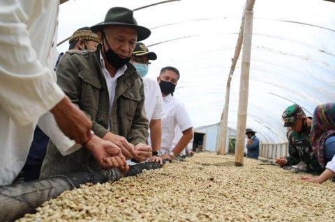 Produk Lokal Tak Terserap, Menteri Teten Minta Impor Kopi Dihentikan