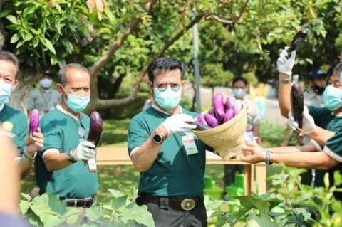 Dukung Proyek <i>Food Estate</i>, Kementan Kawal Penguatan Kerja Sama