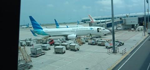 Garuda Siapkan Kargo 35 Ton untuk Ekspor ke Jepang