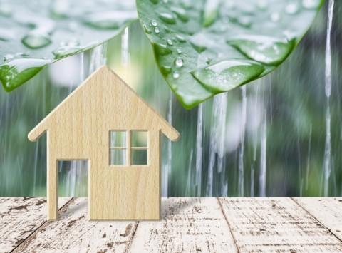 8 Cara Cegah Rumah Bocor saat Musim Hujan