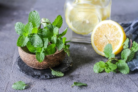 4 Efek Berbahaya jika Mengonsumsi Air Lemon Berlebihan