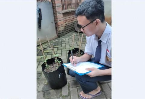Bank Kedelai, Inovasi Pembelajaran SMA Pradita Dirgantara Selama Pandemi