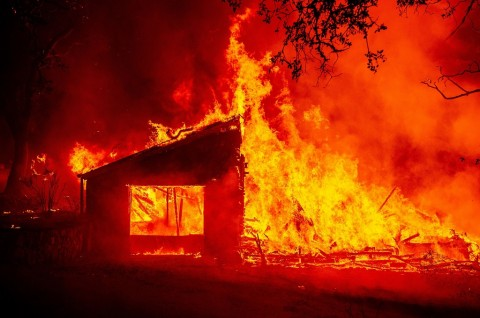 Kebakaran Hutan Picu Evakuasi Masif di Napa Valley California