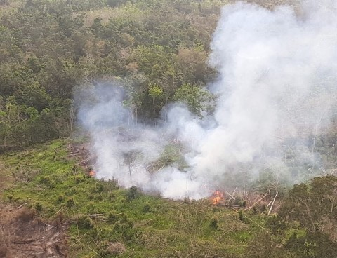 Ratusan Titik Panas Muncul di Bangka Belitung
