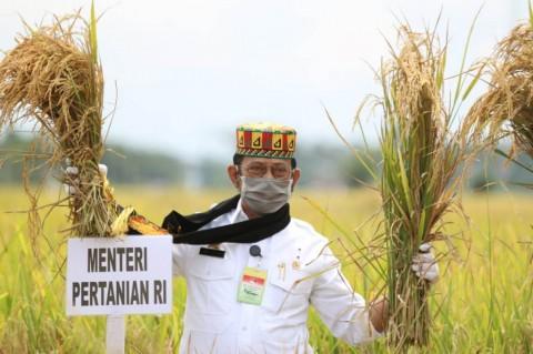 Aceh Punya Potensi Jadi Lumbung Pangan