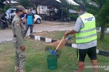 Seorang warga pelanggar perda membersihkan sampah rerumputan di halaman Polsek Pemenang, Kabupaten Lombok Utara, NTB, Rabu, 30 September 2020. ANTARA/Awaludin