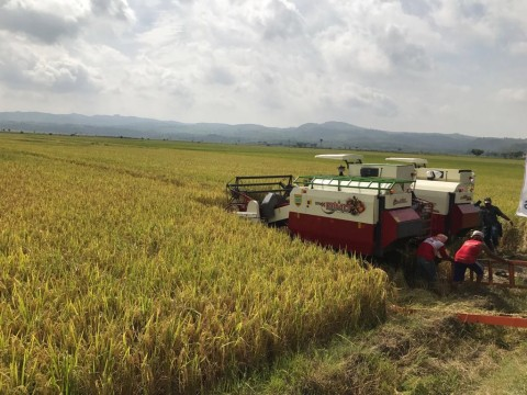 Badan Penyangga Produk Hasil Pertanian Diusulkan Muncul