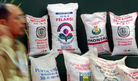 Pengusaha Pupuk Organik di Tanah Datar Kesulitan Pasarkan Produk