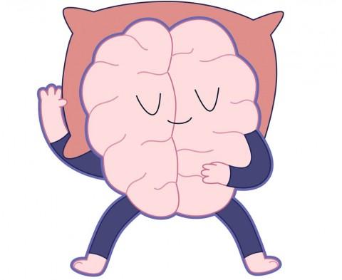 Kenapa Otak Butuh Tidur?