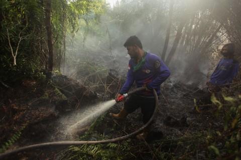 Kebakaran Lahan Gambut di Palangkaraya Berhasil Dipadamkan