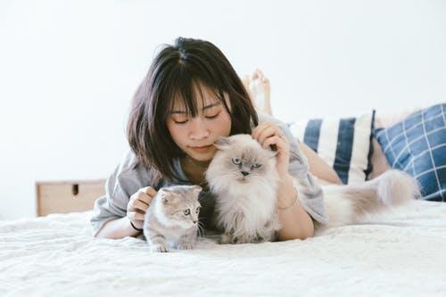 Ada mitos yang menyebutkan bahwa memelihara kucing di rumah dapat membuat wanita kesulitan untuk hamil. (Ilustrasi/Pexels)