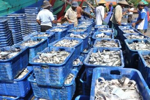 Pandemi, KKP Distribusikan 40 Ribu Benih Ikan Tingkatkan Ketahanan Pangan