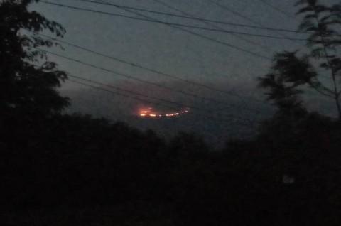 Kebakaran Landa Kilimanjaro, Gunung Tertinggi di Afrika