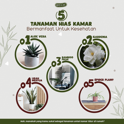 (Infografis: Sandra Odilifia/Gaya.id)