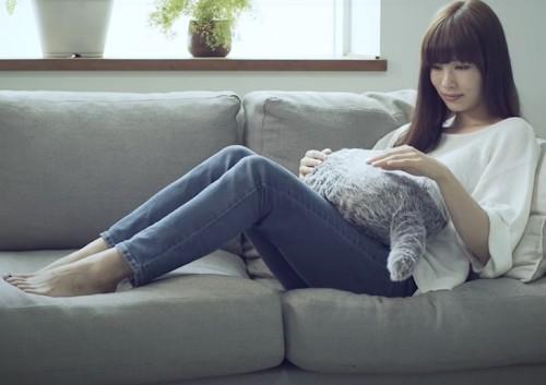 Foto: Qoboo.info