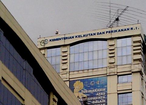 KKP Susun Daftar Penyakit Ikan Berbahaya Demi Jaga Kualitas Ekspor