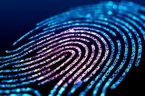Bukan Cuma Software, Keamanan Fisik Data Center Juga Penting