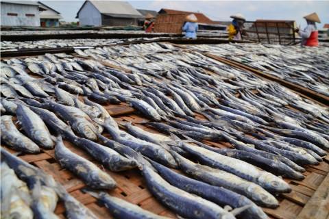 RPHP Papua Aman Bahari Produksi Ikan Asap