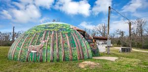 Unik! Rumah Texas Penuh Warna di Bawah Tanah