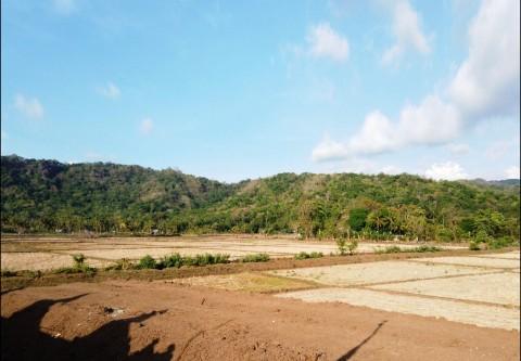 Pengadaan Tanah Jalur Kereta Api Makassar-Parepare Sudah 70%