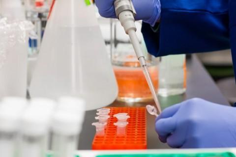 Rekomendasi Satgas Covid PB IDI Terhadap Program Vaksinasi Covid-19 di Indonesia