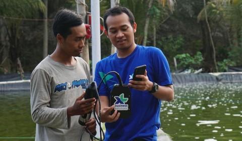 XL Axiata Bawa Solusi IoT ke Budidaya Ikan dan Udang