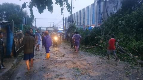 Puting Beliung dan Hujan Deras Terjang Bekasi, Sejumlah Pohon Tumbang
