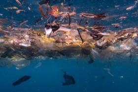 Ada 14 Juta Ton Mikroplastik di Dasar Laut, Lebih Buruk dari Perkiraan
